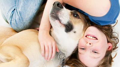 Tierversicherung,Pferdeversicherung